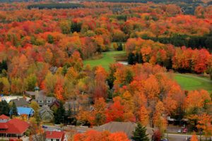 Fall-Color-From-The-Air