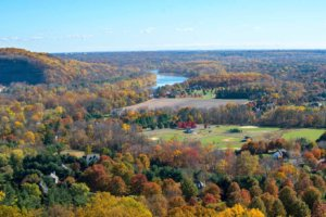 Bucks County Fall Foliage